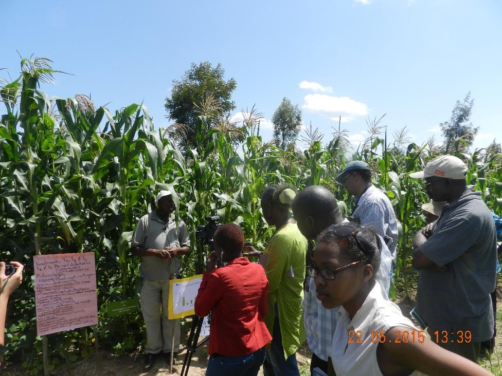 second from right with cap is agras soil health programme director dr bashir jama